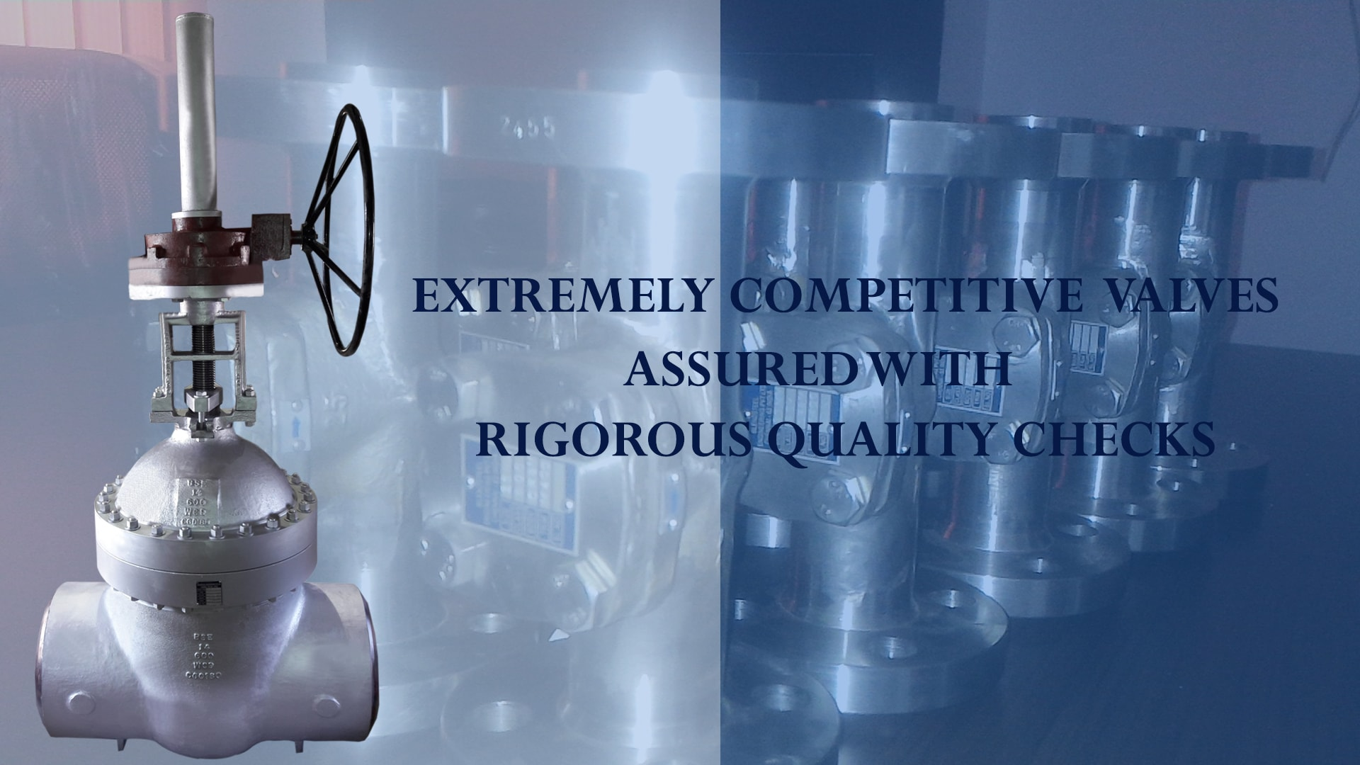 Extremely Competitive valves assured with Rigorous quality checks